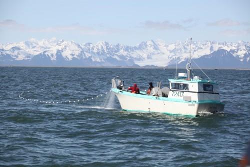 美国阿拉斯加海产的保鲜指南与解冻攻略
