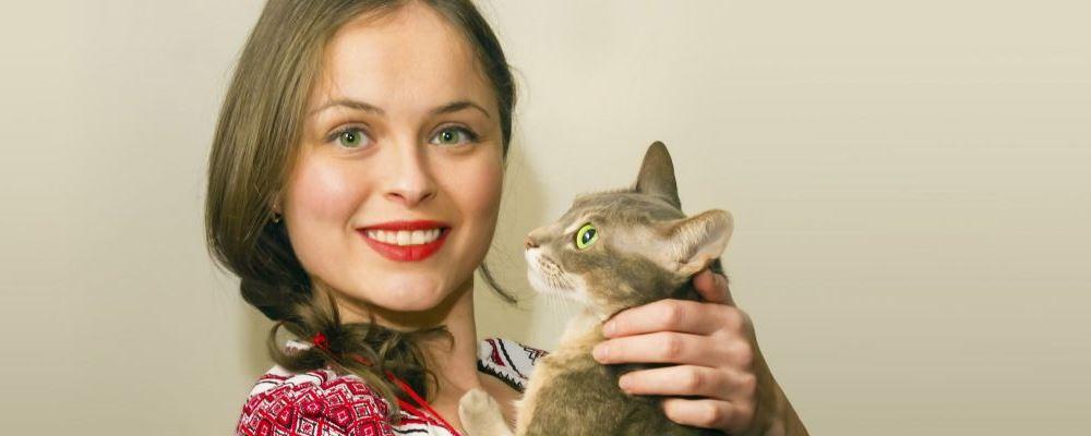 撸猫缓解阿尔茨海默症 如何预防阿尔茨海默症 阿尔茨海默症能治好吗